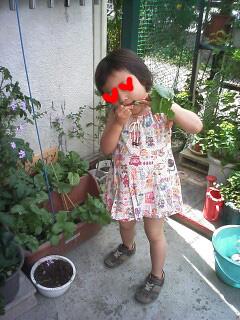 20100523_01_2